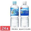 【24本入】おいしい水 天然水 富士山 PET600ml 飲料水 自然 ペットボトル 天然水 富士山 600ml ミネラルウォーター パナジウム 名水 アサヒ飲料 【D】