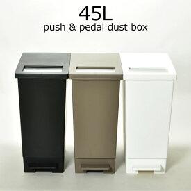 ゴミ箱 プッシュ&ペダルダストボックス 45L キッチン ペダル ステンレス 大型 大容量 45リットル 袋見えない カウンター スリム ゴミ袋 北欧 インテリア雑貨 分別 おしゃれ 使いやすい プッシュ式