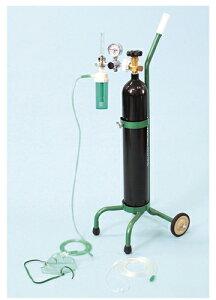 ブルークロス・エマージェンシー 酸素吸入器(キャリータイプ) OX-500V(サンソナシ) 01-5560-24