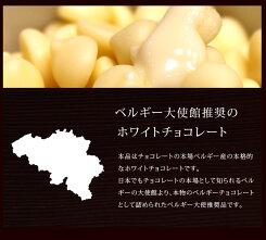 【季節限定】ベルギー産ホワイトチョコレート800g【ゆうメール/送料無料】_<お菓子材料・パン材料>