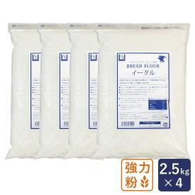 強力粉 イーグル パン用小麦粉 2.5kg×4(10kg)_ ハロウィン