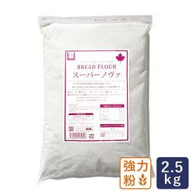 強力粉 スーパーノヴァ(1CW) パン用小麦粉 2.5kg_ ハロウィン