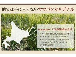 はるゆたかブレンドプレミアム72.5kg×4(10kg)まとめ買い江別製粉北海道産ハルユタカ【国産小麦】_