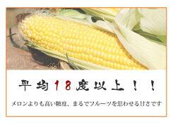 【送料無料】【産地直送】北海道江別産とうもろこし恵味ゴールド2L(450g)×5本入露地栽培季節限定_<野菜><生鮮食品>