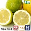 レモン 有機JAS 有機レモン(A品) 中原観光農園 1kg 国産 2020年2月28日am7:59受付、3月6日出荷_【支払いはクレジッ…
