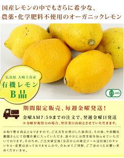 【無農薬】国産有機レモン(B品)中原観光農園1kg__果物酒酵素シロップオーガニック国産