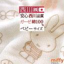 ベビータオルケット 60×90cm 日本製 綿100% パイル ガーゼ タオル地 京都西川 お昼寝 幼児 子ども 夏 吸湿 ミニサイズ