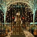 【改良版】AGPtEK 3MX3M/300LED 酒場 バー 雰囲気作り クリスマス、パーティー、アクアリウム、結婚式などイベント大…
