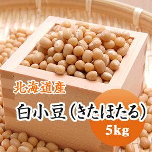 小豆 白小豆 (きたほたる) 北海道産 5kg【令1年産】数量限定