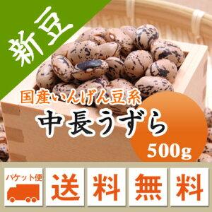 中長うずら 北海道産 500g【令和2年産】 メール便 送料無料