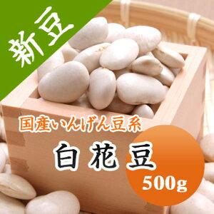 白花豆 北海道産 500g【令和2年産】