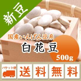 白花豆 北海道産 500g【令和2年産】 メール便 送料無料