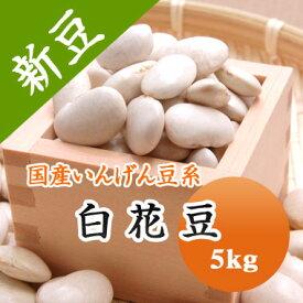 白花豆 北海道産 5kg【令和2年産】大容量