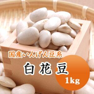 白花豆 しろはな豆 北海道産 1kg【令和2年産】