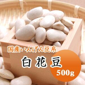 白花豆 しろはな豆 北海道産 500g【令和2年産】