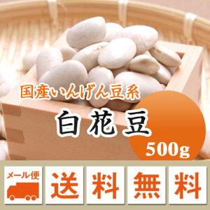白花豆 しろはな豆 北海道産 500g【令和2年産】 メール便 送料無料