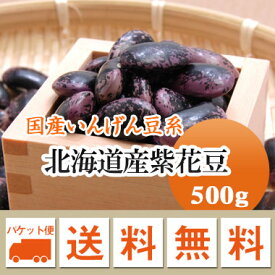 紫花豆 北海道産 500g【令和1年産】 メール便 送料無料