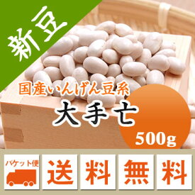 白いんげん豆 大手亡 北海道産 500g【令和2年産】 メール便 送料無料