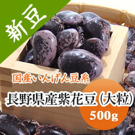 紫花豆 高原花豆 長野県産 500g【令和2年産】