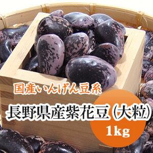 紫花豆 高原花豆 長野県産 1kg【令和2年産】※サイズ不揃いのため特価!!