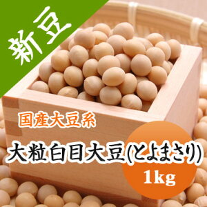 大豆 大粒白目大豆 とよまさり 北海道産 味噌用 1kg【令和2年産】