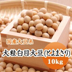 大豆 大粒白目大豆 とよまさり 北海道産 10kg【令和1年産】