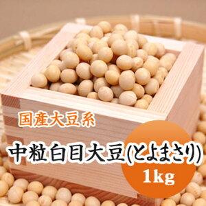 大豆 中粒白目大豆 とよまさり 北海道産 1kg
