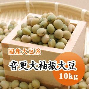 大豆 音更大袖振大豆 北海道産 10kg【令和2年産】大容量