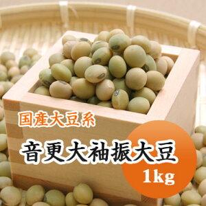 大豆 音更大袖振大豆 北海道産 1kg【令和2年産】ひたし豆 煮豆 豆乳 味噌