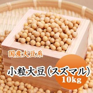 大豆 小粒大豆 スズマル 北海道産 10kg【令和1年産】