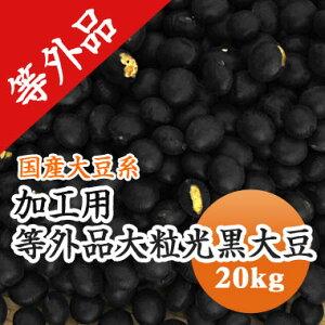 黒豆 【加工用 等外品】 大粒光黒大豆 北海道産 訳あり20kg【令和1年産】