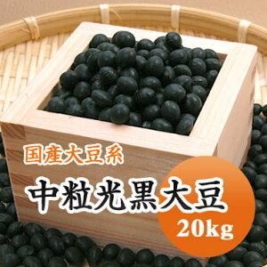 黒豆 中粒光黒大豆 北海道産 20kg【令和1年産】