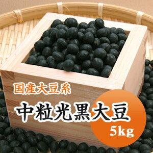 黒豆 中粒光黒大豆 北海道産 5kg【令和1年産】
