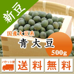 大豆 青大豆 山形県産 500g【令和2年産】 メール便 送料無料