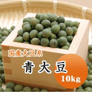 大豆 青大豆 山形県産 10kg【令和2年産】大容量