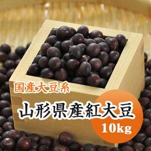 大豆 紅大豆 山形県産 10kg【令和1年産】
