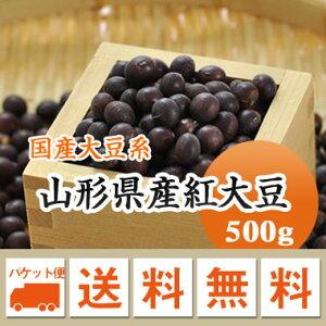 大豆 紅大豆 山形県産 500g【令和2年産】 メール便 送料無料