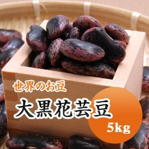 紫花豆 中国産 大黒花芸豆 5kg