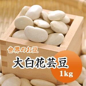 白花豆 中国産 手撰大白花芸豆 1kg