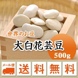 白花豆 中国産 手撰大白花芸豆 500g【メール便 送料無料】
