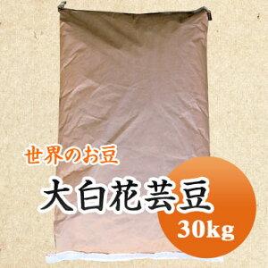 白花豆 中国産 手撰大白花芸豆 30kg 【業務用】
