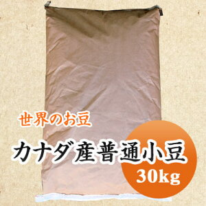 小豆 カナダ産普通小豆 大容量 30kg 【業務用】