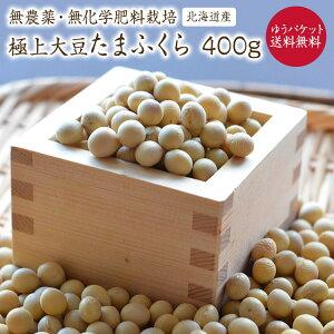 【ゆうパケット送料無料】無農薬・無化学肥料 北海道産 たまふくら大豆 400g