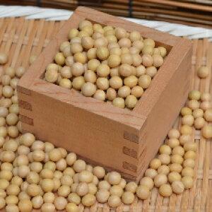【ゆうパケット 送料無料】大豆氷!900g 鶴の子大豆(中粒)北海道産 お味噌作りに最適