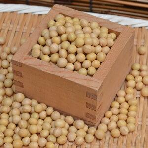【宅配便】北海道産鶴の子大豆(中粒)500g お味噌作りに最適 新豆