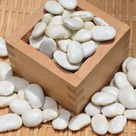 【宅急便】北海道産白花豆 5kg 令和1年産 不揃い・割れあり煮込み料理や白餡にしても美味しい大粒いんげん豆