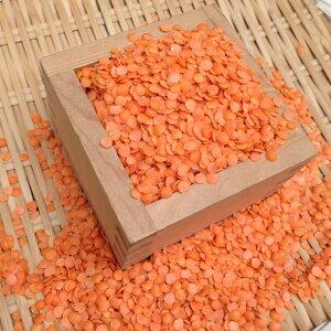 【ゆうパケット 送料無料】900g レッドレンズ豆(皮なし) 赤レンズ豆 アメリカ産
