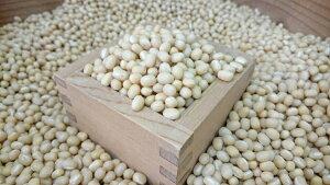【ゆうパケット 送料無料】900g 白小豆(ホッカイシロショウズ)北海道産 中山農園の豆 令和1年産 新豆