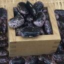 【宅配便】平成30年産 信州特産高原紫花豆(特A大粒) 500g