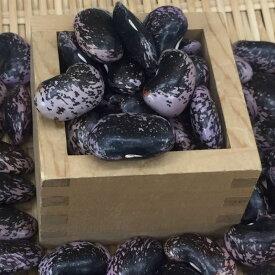 【送料無料】500g 信州特産高原紫花豆(大粒) 令和1年産 煮豆レシピ付き!